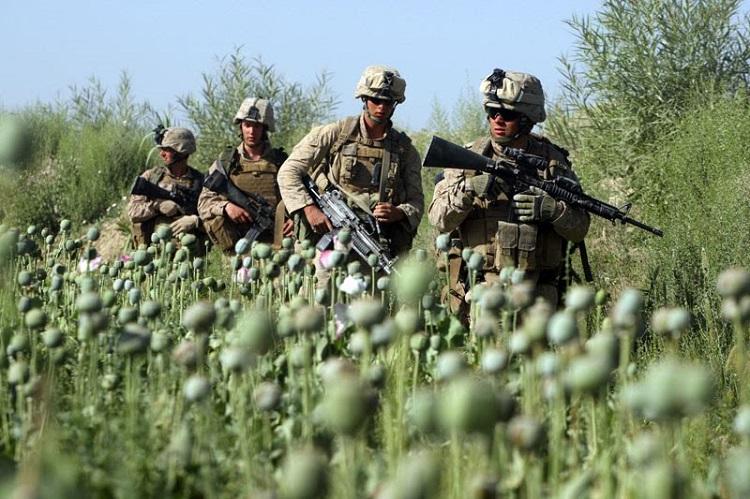 marines_3.jpg