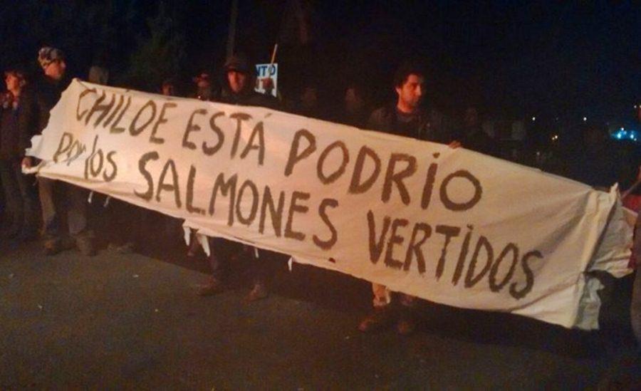 chiloe-protesta-2016-5-31e5i2m9bxi93smjczowzu.jpg