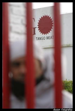 tango03.jpg