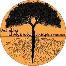 algarrobo_300_x_300.jpg